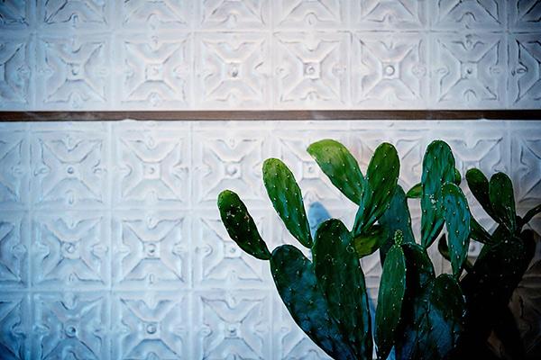 Cactus Modern Mexican & Cantina | Lincoln, NE | cactus